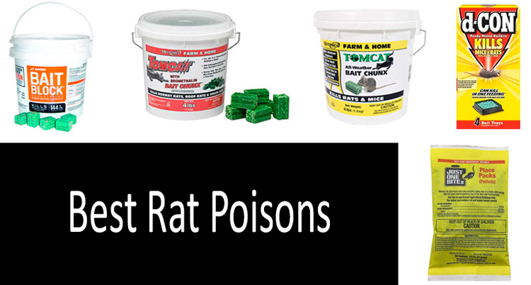 Best Rat Poisons: photo
